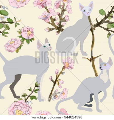 Three Gray Siamese Or Sphinx Cats In Sakura Flowers On A Light Background Seamless Vector Illustrati