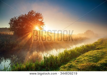 Fantastic foggy river with fresh green grass in the sunlight. Sun beams through tree. Location place Seret river, Ternopil. Ukraine, Europe. Wonderful summer wallpaper. Discover the world of beauty.