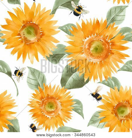 Beautiful Seamless Pattern With Watercolor Hand Drawn Sunflowers. Stock Summer Illustration.