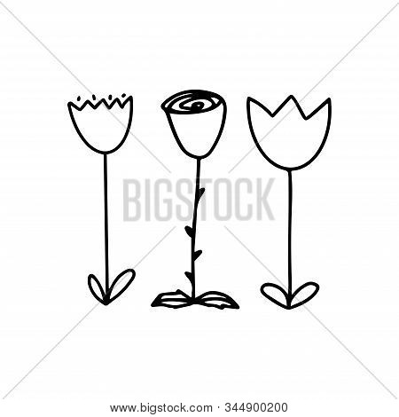 Set Of Three Cute Flowers Two Tulips And A Rose. Vector Doodle Outline Illustration Isolated On Whit