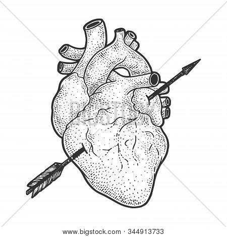 Heart Realistic Pierced With Arrow Sketch Engraving Vector Illustration. Romantic Love Lovesickness