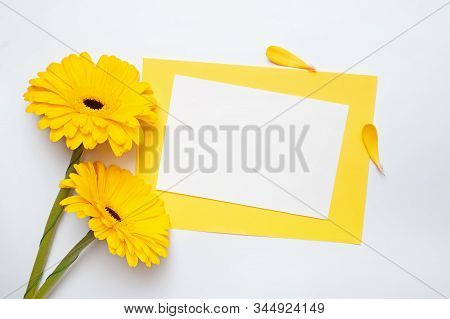 Two Gerbera Flowers Of Yellow Color And Blank Paper Card On White Table,
