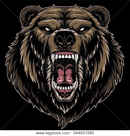 Vector Illustration, Head Of A Ferocious Grizzly Bear, On A Black Background