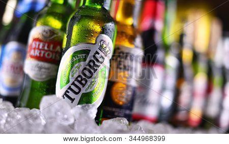 Poznan, Pol - Dec 23, 2019: Bottles Of Famous Global Beer Brands Including Tuborg, Heineken, Becks,