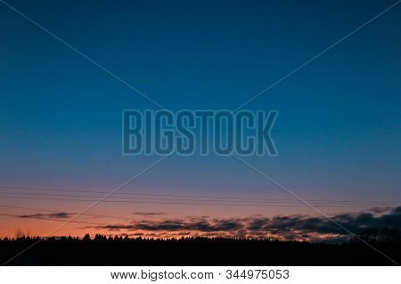 Twilight Blue Sky View With Treetops Of Firtree, Orange Sunset