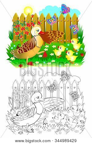 Colorful And Black And White Page For Coloring Book For Kids. Illustration Of Mother Duck And Little