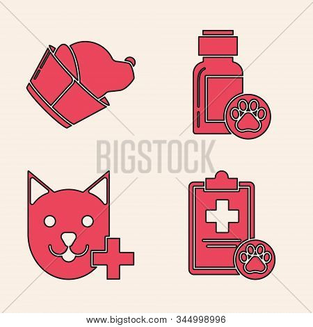 Set Clipboard With Medical Clinical Record Pet, Veterinary Clinic Symbol, Dog Medicine Bottle And Ve