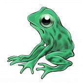 A little sad and lonely green Frog is looking at you. poster