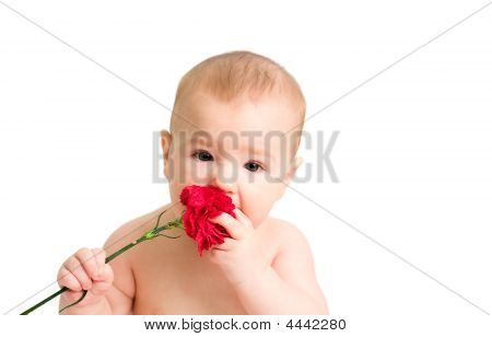 Romantic Boy