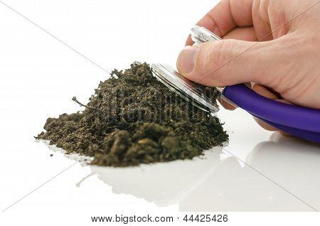 Stethoscope On Soil