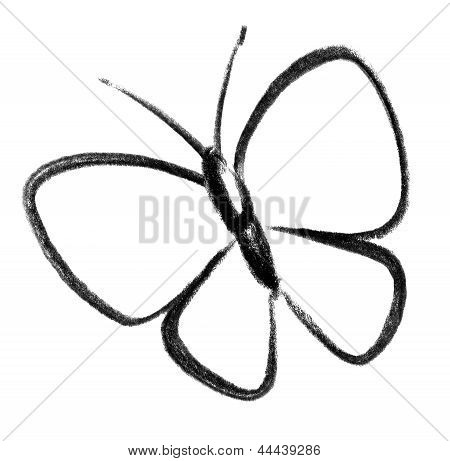 Butterfly Icon