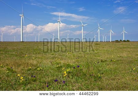 Wind Generators Over Blue Sky