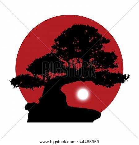 Silhouette Of A Bonsai On A Red Sun Background