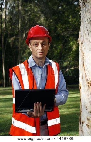 Tree Fellow