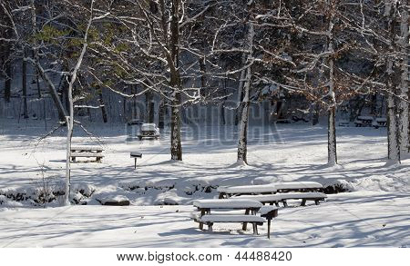 Snow in the Picnic Park