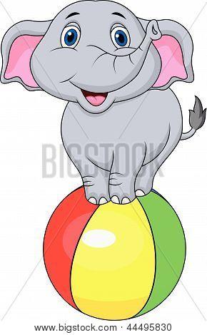 Cute elephant cartoon standing on a colorful ball