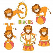 Collection of cute circus lion on white background . Vector illustration poster