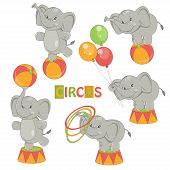 Collection of cute circus elephant on white background. Vector illustration poster