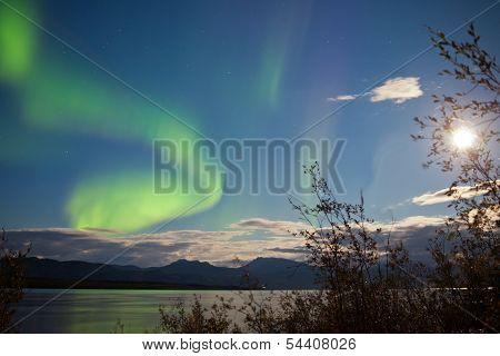 Northern Lights Full Moon Over Lake Laberge Yukon