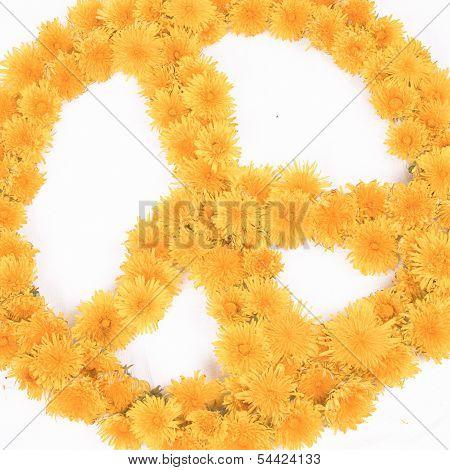 Peace, Flower Symbols