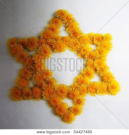Dandelion Star Of David