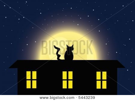 Night background with the cat and full moon. Isolated picture of compact keyboard. Raster illustration. poster