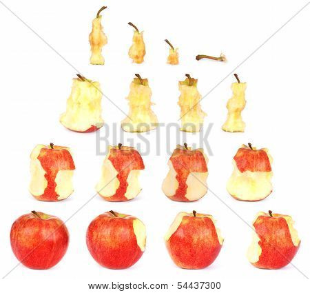 Timeline Of Eating An Apple (clipping Path)