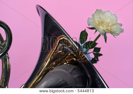 French Horn With Yellow Rose On Pink