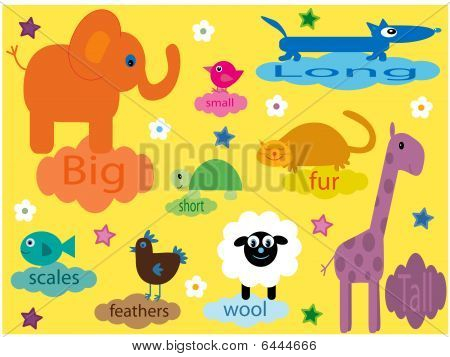 Collection of animals for small children educating about differences poster