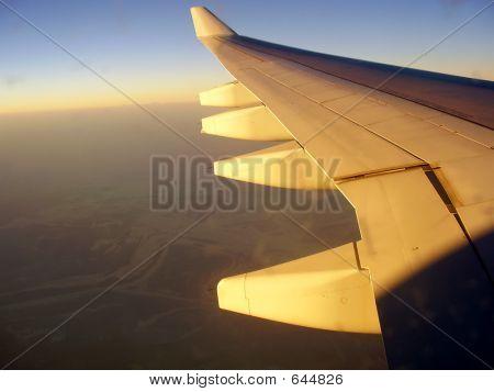 flightwing