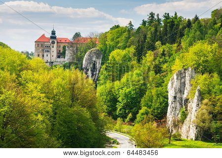 Castle Pieskowa Skala In National Ojcow Park, Poland