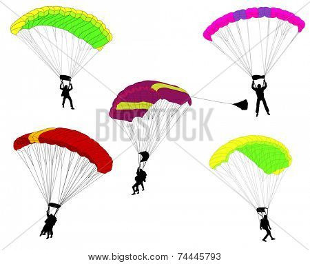 skydivers collection illustration