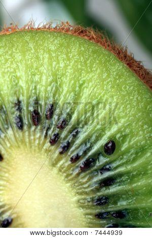Fresh Kivi Fruit