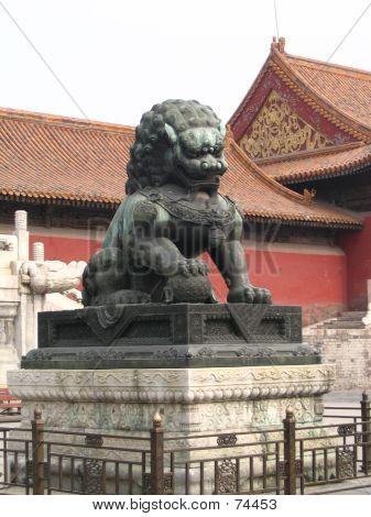 Male Lion (China)