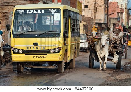 Bullock Cart And Bus On The Road