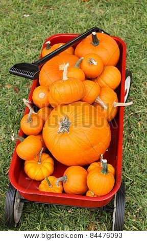 Pumpkins in a Red Wagon 2