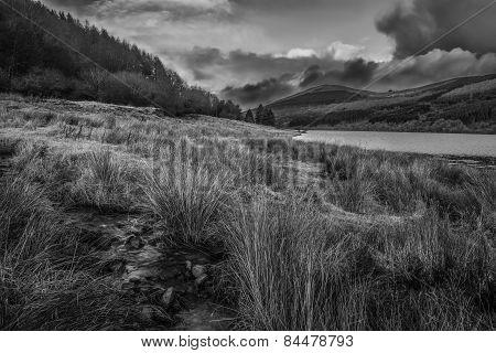 Brecon Beacons - Talynont Mountain View