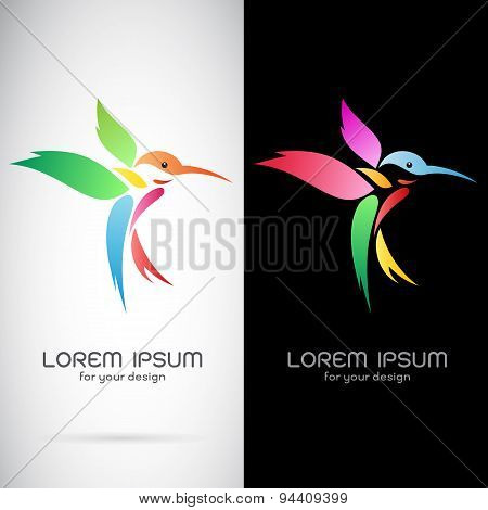 Vector Image Of An Hummingbird Design On White Background And Black Background, Logo, Symbol