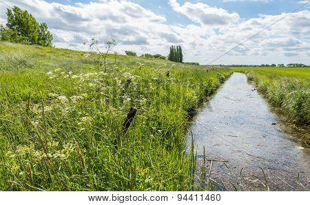 Ditch In A Rural Landscape