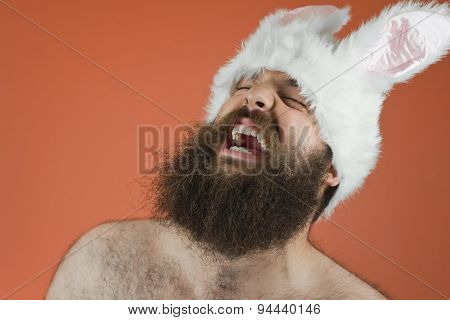 Laughing Bunny Man