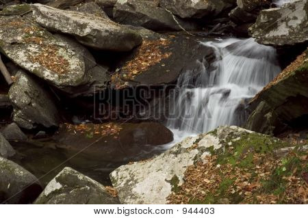 Small Forest Cascade