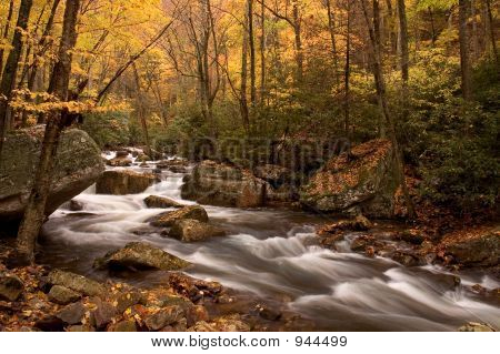 Autumn Forest Cascade