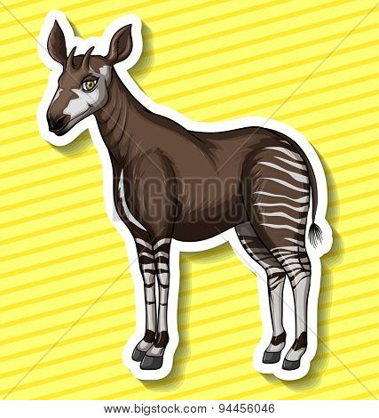 Okapi standing alone on yellow striped background