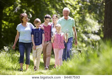 Multi Generation Family Walking Through Summer Countryside