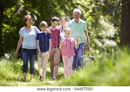 Multi Generation Family Walking Through Summer Countryside