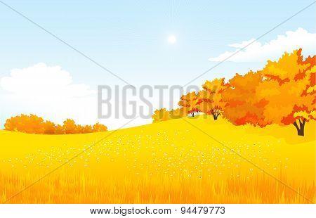 Vector of autumn landscape.