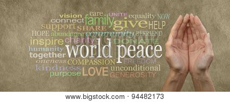 Contribute to World Peace Campaign Banner