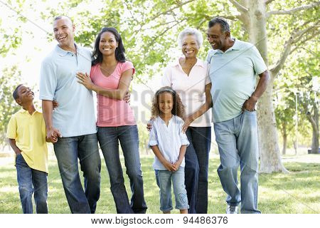 Multi Generation African American Family Walking In Park