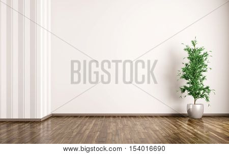Interior Background Of Room With Plant 3D Rendering