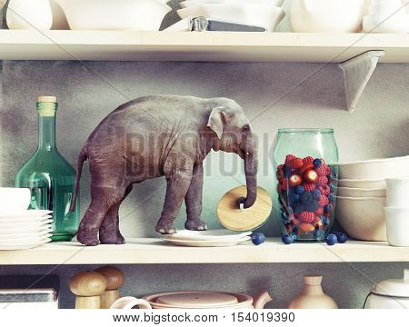 The tiny elephant opens the glass vase with berries. Photo combination concept